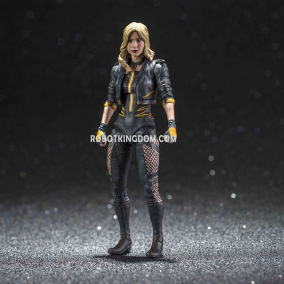 Hiya Toys LD0042 INJUSTICE 2 Black Canary. Preorder. Available in February 2020.